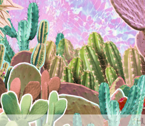 This is why Cactus Water is your skin's new BFF
