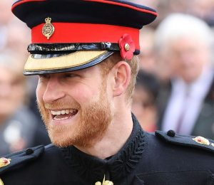 See the pictures of Prince Harry playing with puppies in uniform
