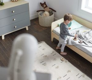 The Best Nanny Cam Options: What You Need to Know